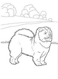 dog coloring pages 7 teenagers coloring pages favorite dog