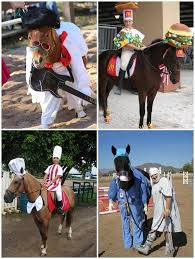 Halloween Costumes Horse Halloween Costumes Horses U2013 Creative Ideas Pet Costumes