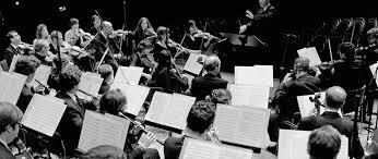 la chambre philharmonique hd wallpapers la chambre philharmonique 2016 mobile0mobile5 ga