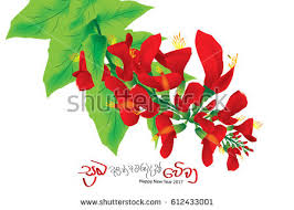 Tamil New Year Bay Decoration by Tamil Stock Images Royalty Free Images U0026 Vectors Shutterstock