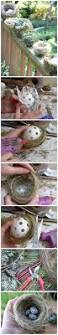 Large Scale Easter Decorations by How To Make Your Own Decorative Bird Nests The Pecks