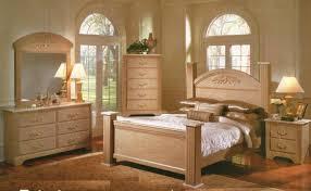 adult bedroom adult bedroom sets home designs ideas online tydrakedesign us