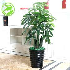 artificial indoor plants for office tree stump small trees