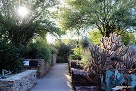 Desert Botanical Garden Restaurant Visit Another Planet Arizona S Desert Botanical Garden