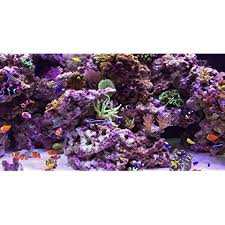 current usa orbit marine aquarium led light amazon cambodia shopping on amazon ship to cambodia ship overseas
