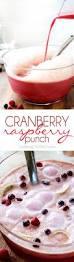 best 25 raspberry punch ideas on pinterest punch baby shower