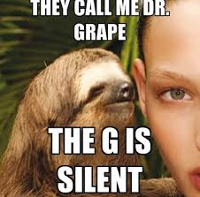 Sloth Jokes Meme - sloth they call me dr grape the g is silent meme memes pinterest