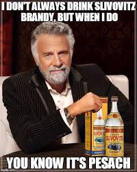 Passover Meme - most interesting man in the world drinks slivovitz imgflip