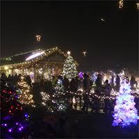 aspen meadow celebration of lights welcome