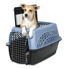 Petsmart Dog Bed Dog Crates Amazon Prime Crate Tray Replacement Covers Petsmart