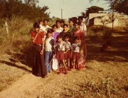 the panasa family