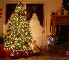 12 funny things your christmas tree says about you reader u0027s digest