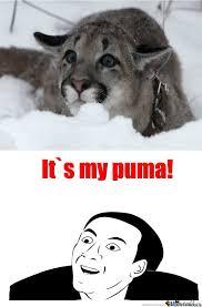 Puma Meme - my puma by wassup5 meme center