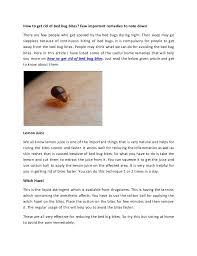 remedies for bed bug bites how to get rid of bed bug bites remedies list