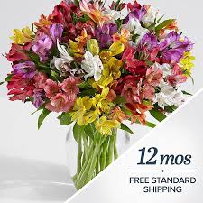 Flowers Of The Month List - stargazer lily bouquets proflowers