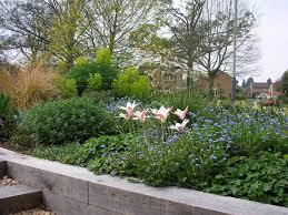 small front garden design descargas mundiales com