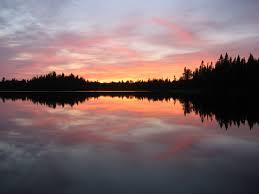 1108 wilson ave detroit lakes mn 56501 park co realtors