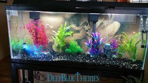 Asian Themed Fish Tank Decorations Aquarium Image Gallery Deepbluethemes Com
