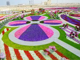 dubai u0027s miraculous flower garden in the desert project ods