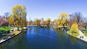 boston vacation ideas and guides travelchannel travel channel