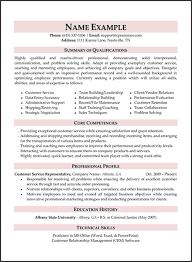 resume summary exles customer service ceo pay research paper homework help writing meta resume