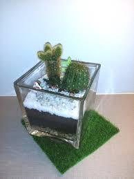 skyland gardening terrarium