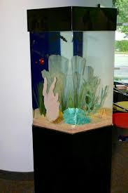 Fish Tank Reception Desk Office Photos Of Pediatric Affiliates Of Hampton Roads