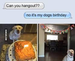 Birthday Meme Dog - can you hangout no it s my dogs birthday humoar com