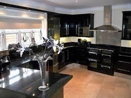 black kitchen cabinet doors kitchen u0026 bath ideas black kitchen