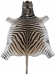 Genuine Zebra Rug Natural Large Gemsbok Skin Rug 1 African Antelope Hide Size 5 U0027x