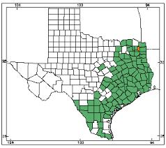 alligators in map alligator herps of