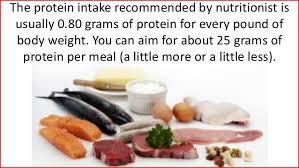 10 of the best protein foods for weight loss men over 40 men ove u2026