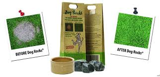 amazon com dog rocks prevent grass burn marks 2 month supply