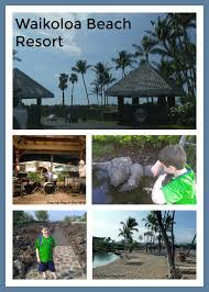 Hawaii leisure travel images Things to do at waikoloa beach resort day by day in our world jpg