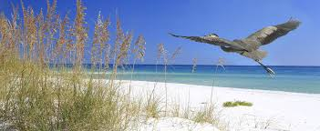 Panama Place Vacation Rentals Beach Vacation Rental Properties Port Rentals Panama City Beach Vacation Rentals