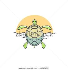 turtle drawing stock images royalty free images u0026 vectors