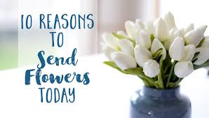 send flower 10 reasons to send flowers today the daily femme