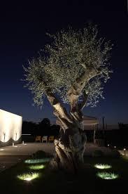 Landscaping Lighting Ideas by 244 Best Ulkovalaistuksia Outdoor Lighting Images On Pinterest