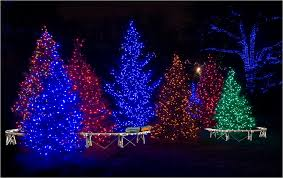 How To String Christmas Tree Lights by Christmas Lights Outdoor Trees Lighting And Ceiling Fans