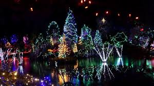 Vandusen Botanical Garden Lights Lights Show On Livingstone Lake Vandusen