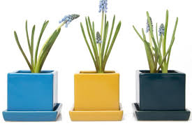 Modern Flower Vase Modern And Contemporary Pottery Vases And Terrariums Chive