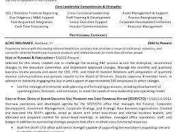 cfo resume templates example resume executive summary 10