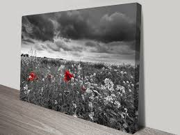 floral wall art u0026 macro photos flowers and fields canvas prints