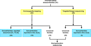 Is Night Blindness Hereditary Homozygosity Mapping And Targeted Sanger Sequencing Reveal Genetic