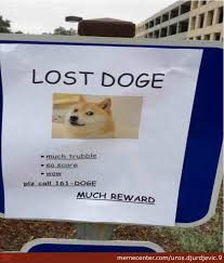 Lost Doge Meme - what will the owners say when they see all the doge memes by uros
