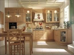 kitchen modern kitchen design ideas top kitchen designs most