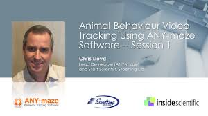 animal behavior video tracking using any maze software session