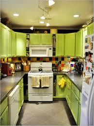 kitchen splendid awesome lime green kitchen cabinets mesmerizing
