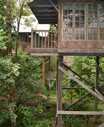 best tree houses bird nests and tree houses on pinterest arafen