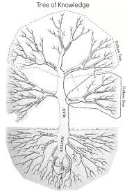 tree of knowledge hmolpedia